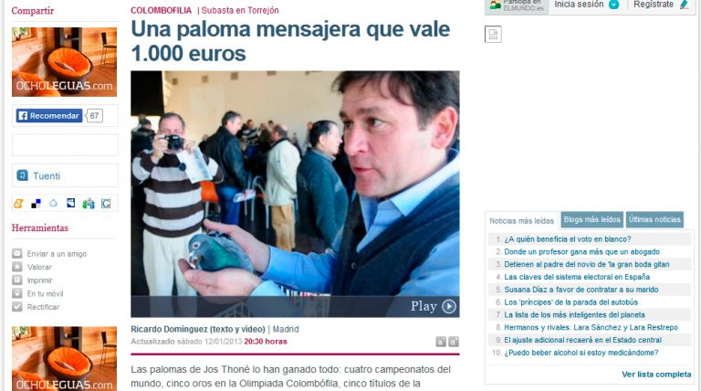 Redactor freelance El Mundo: colombofilia