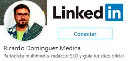 Ricardo Domínguez Linkedin